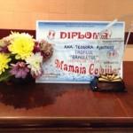 Diploma-si-trofeu
